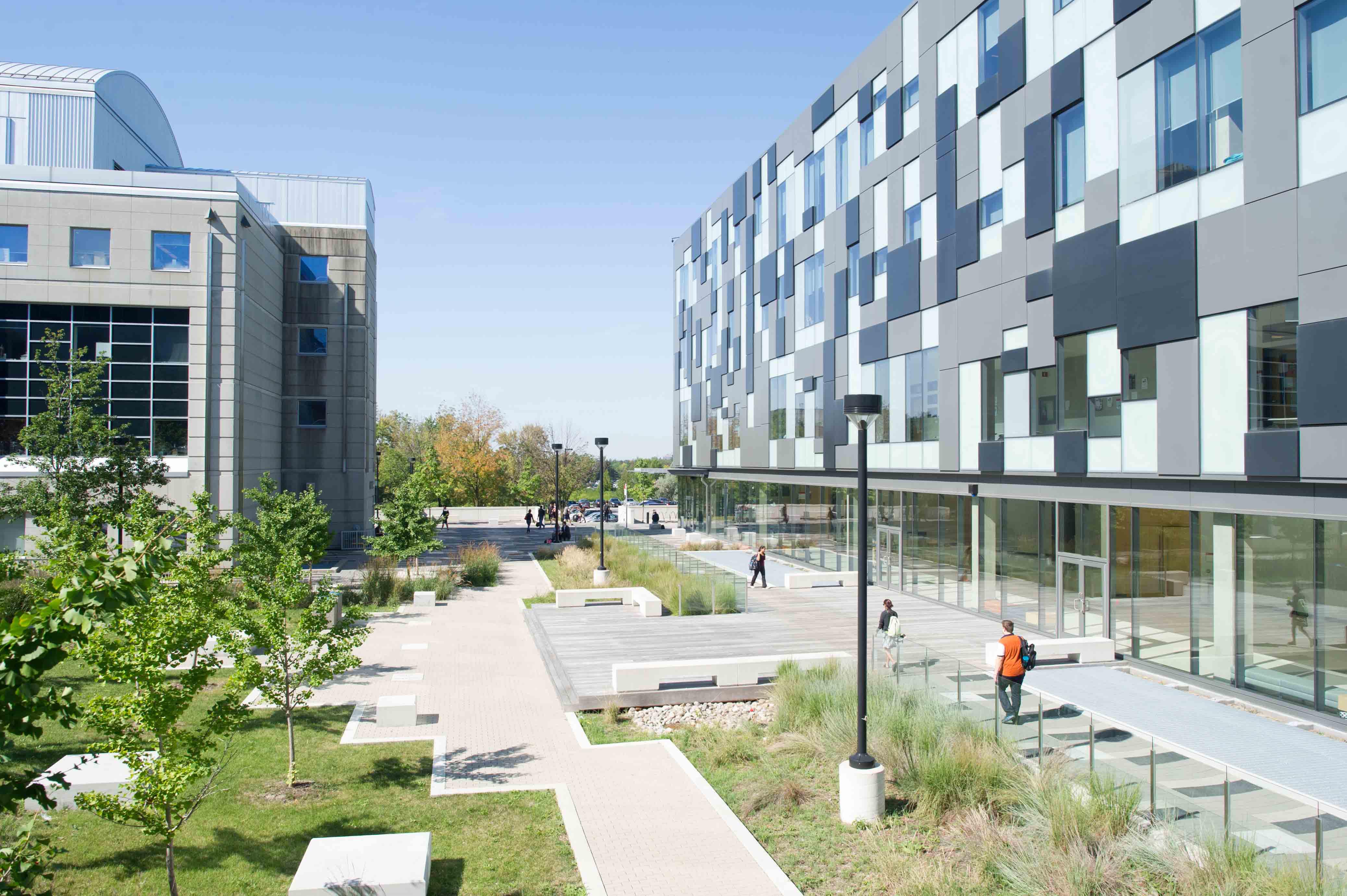 The York University toronto
